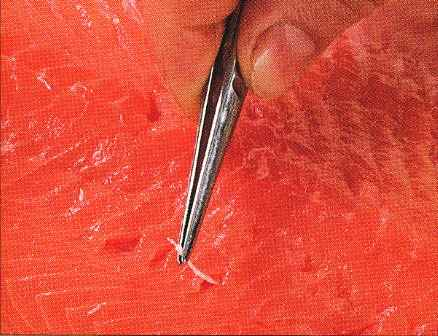 Prepare and Marinate The Fresh Salmon Slices