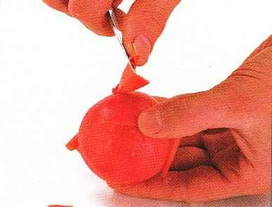 When cold, peel the skin from the tomatoes with a small knife