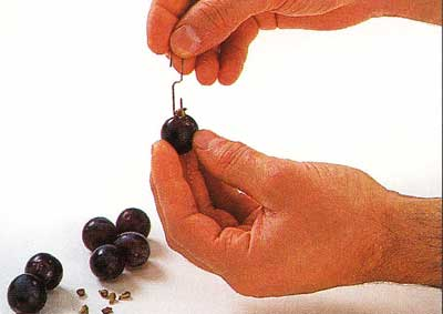 How-to-Deseed-Grapes