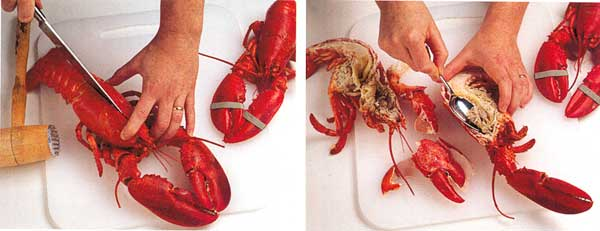 Fish-How-to-clean,-how-to-choose,-how-to-store-and-more-steps-how-to-Lobster