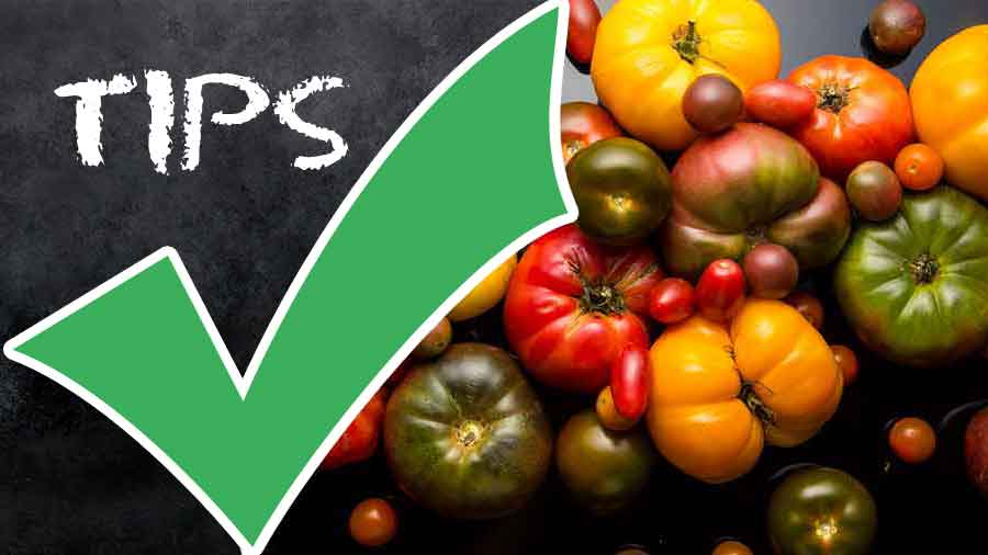 How-to-Choose-Tomatoes-nutrition-facts-calories-how-to-store-tips