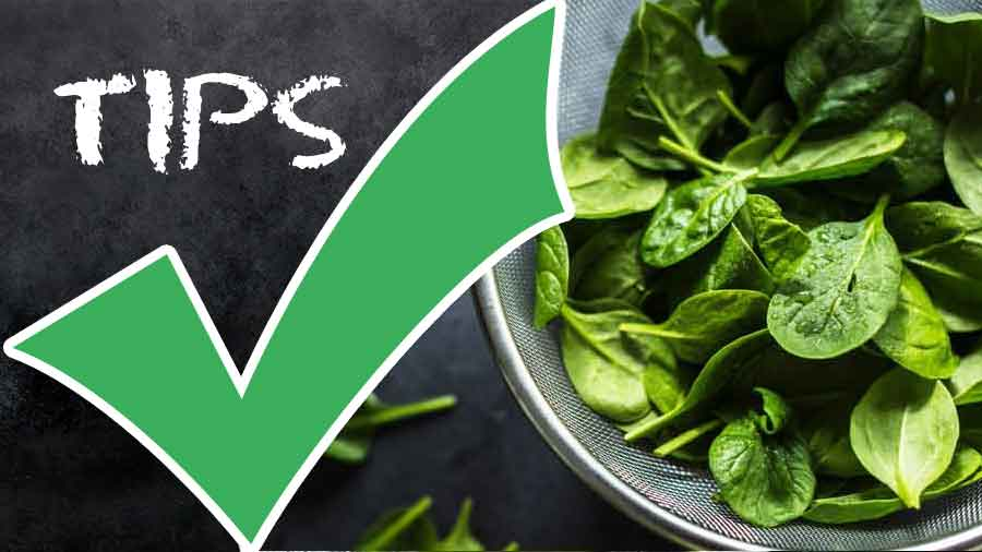How to Eat Spinach-How to Choose Spinach-Nutrients and Calories in Spinach-tips