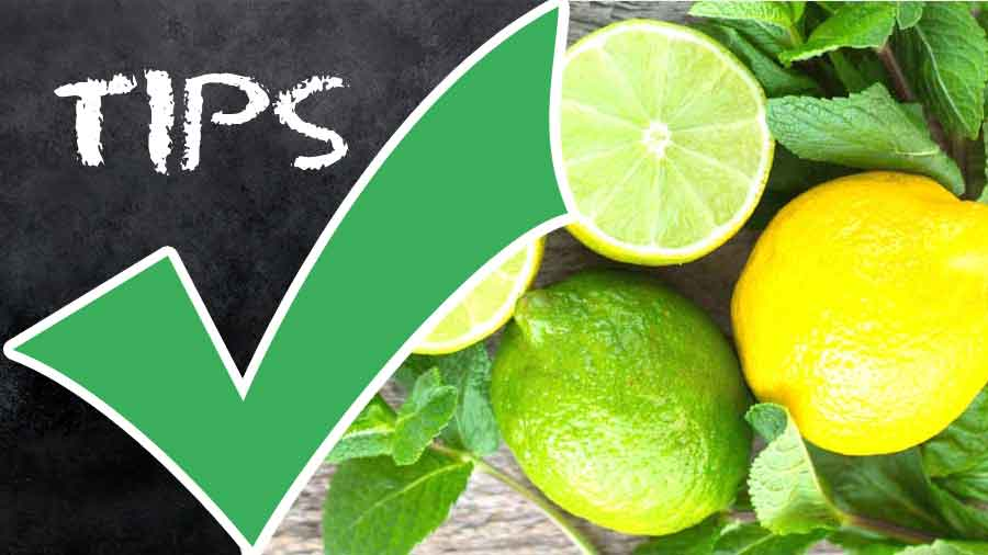 Nutrients in Lemons-How to Use Lemons-Choose Lemon and Store Lemons-Preserve