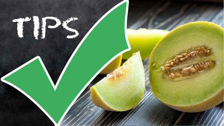 Nutrients-in-Melons-and-Other-Things-to-Know-About-Them-tips-calories
