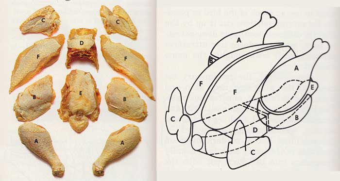 Pieces for every purpose-how-to-make-tips-chicken-and-poultry
