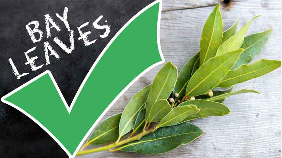 Bay-Leaves-tips-recipes-step-by-step
