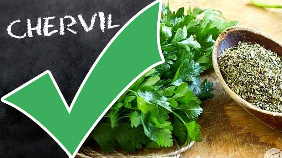 Chervil-tips-ingradent-STEP-BY-STEP