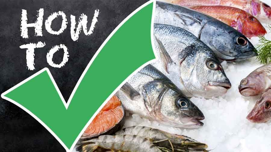 Fish-How to Clean-How to Choose-How to Store and More-tips