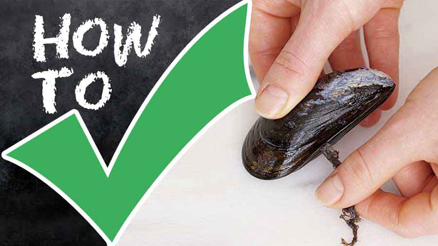 How-to-Prepare-Mussels-step-by-step-with-photo