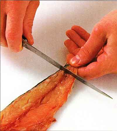 How to Remove Skin from a Fish Fillet-step by step with photo1