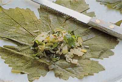Stuffed-Vine-Leaves-With-Garlic-Yogurt-Mediterranean-step-by-step-photo-3