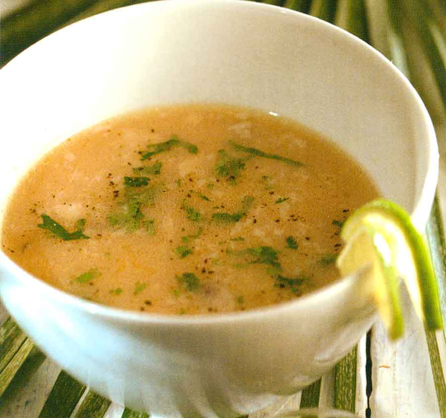 Diet-Food-Simple-Light-Meat-Broth-Recipe-SOUPS-FROM-THE-SEAS-FISH-CONCENTRATE-easy-homemade
