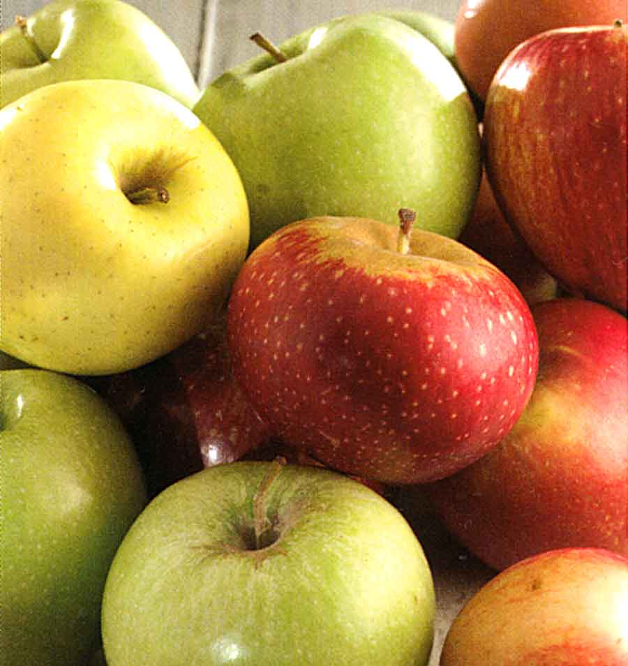 How to Choose-How to Store-How to Use Apple-Recipes with Apple-cook-eating-store-how to dried-nutritions facts- calories in apple