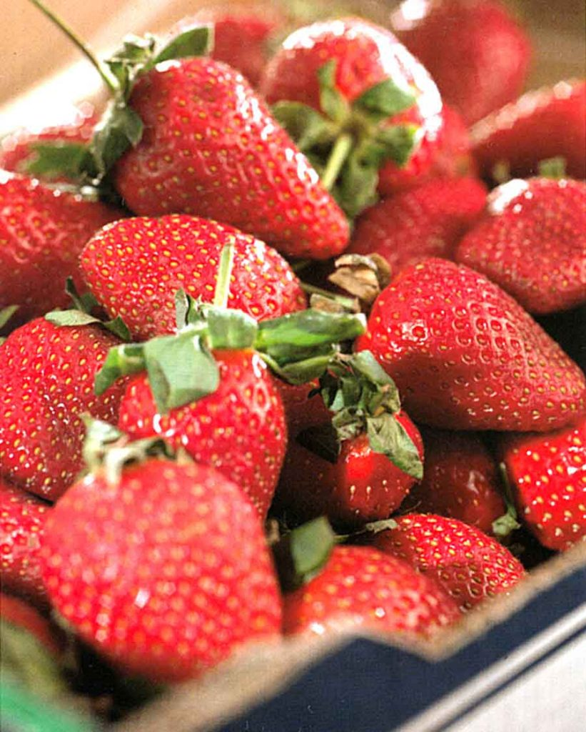 How to Choose-How to Store-How to Use Strawberries-Benefits of Strawberry-calories in-nutrition facts