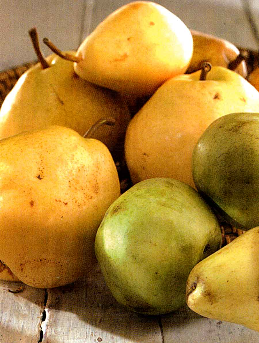 How to Choose-Store-Benefits of Pears-How to Use Pears-Calories and Nutrition Facts-tips