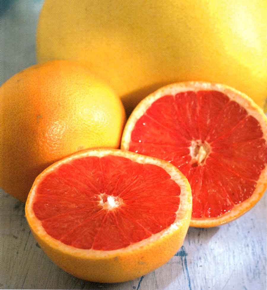 How-to-Choose-Store-How-to-Use-Grapefruit-How-to-Benefits-of-Grapefruit-Calories-and-Nutrition-Facts