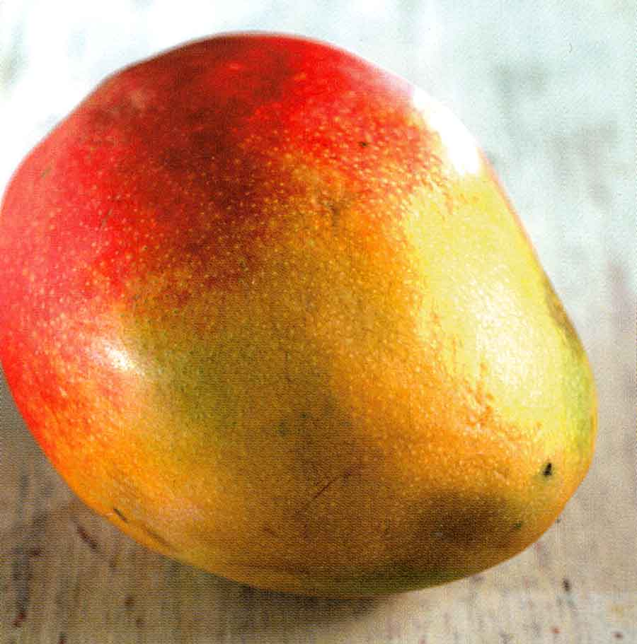 How To Choose Store How To Use Mango Benefits Of Mangoes Calories And Nutrition Facts Recipematic